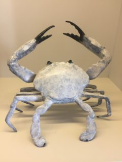 Small Bronze Crab_2