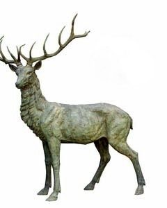 Stag_large